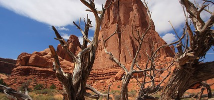 Arches, Red Rock Tower