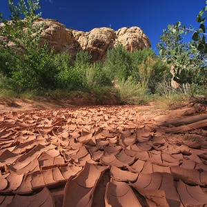 Capitol Reef, Dried Up Creek