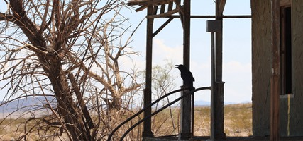 House With Crow, Route 66