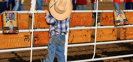 Junior Cowboy at Glasgow Rodeo