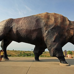 World's Largest Buffalo, Jamestown